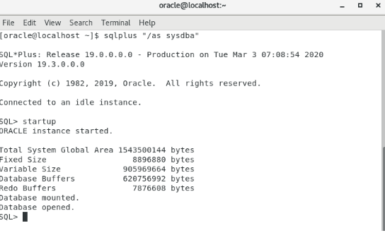 Oracle 19 Installation On Linux